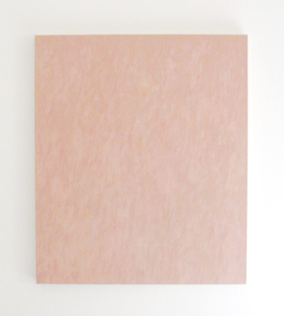 FP: Rose Painting, 1993 • oil on canvas, 102 x 86.5 cm