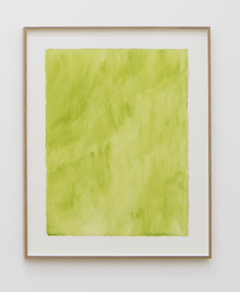 Olive Green, 1995 • watercolour on paper, 76.5 x 57.5, framed
