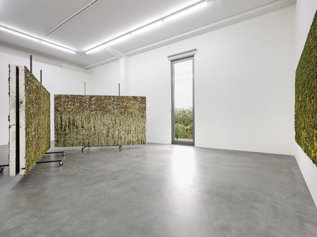 Spaces, 2013 • Installation view at PEAC, Freiburg (DE)