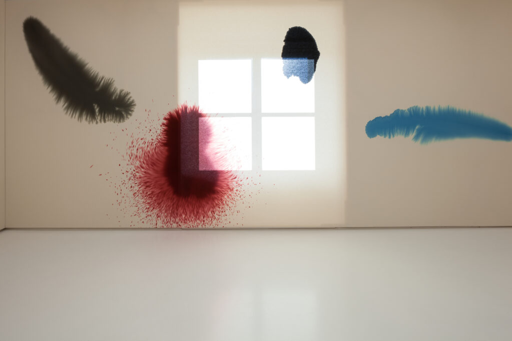 Giacomo Santiago Rogado, 2014 • exhibition view at Helmhaus, Zürich (CH)