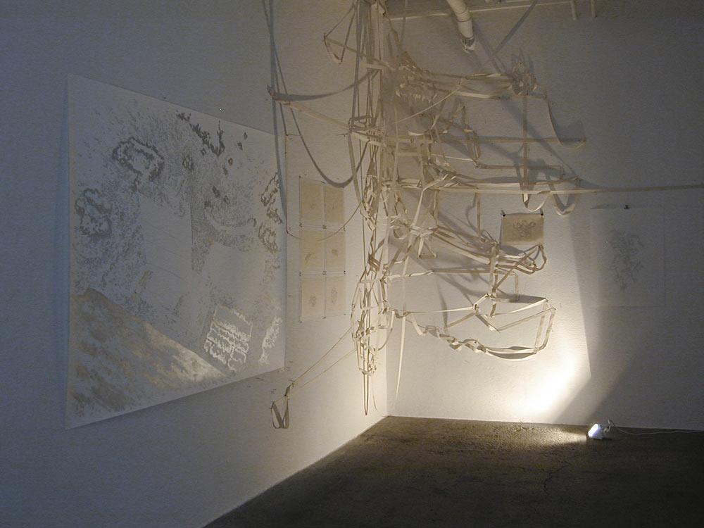 Allmend, 2005 • installation view Galerie Mark Müller, Zürich