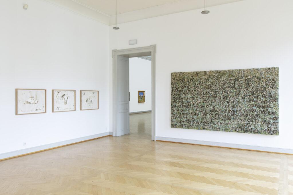 La luca alpina, 2019 • Installation view at Kunstmuseum St.Gallen (CH)