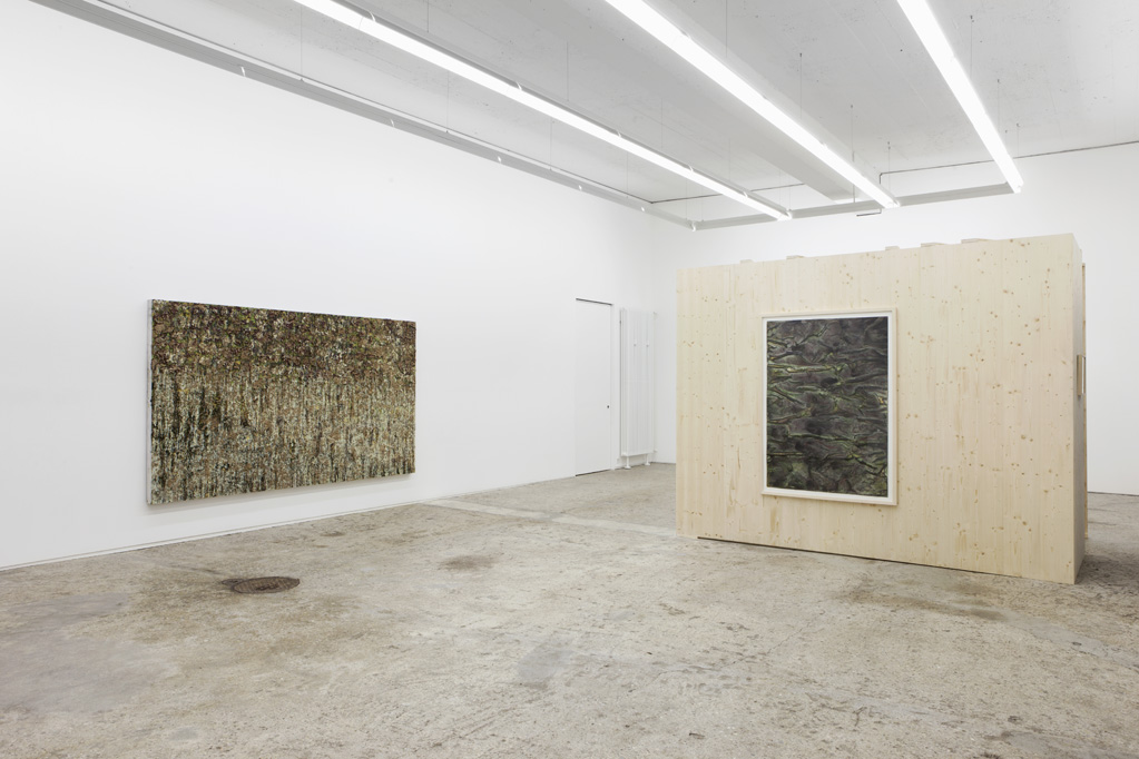 Exhibition view • Patrick Rohner, «Realgar», 2013