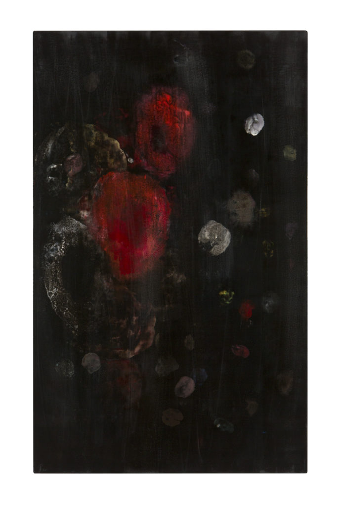 Schwarzer Mohn  II  (The Black Garden), 2011 • oil and polyester resin on canvas, 113 x 70 cm