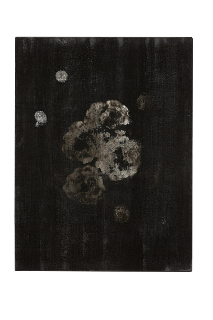 Schwarzer Diamant (The Black Garden), 2005 • oil and polyester resin on canvas, 70 x 53 cm