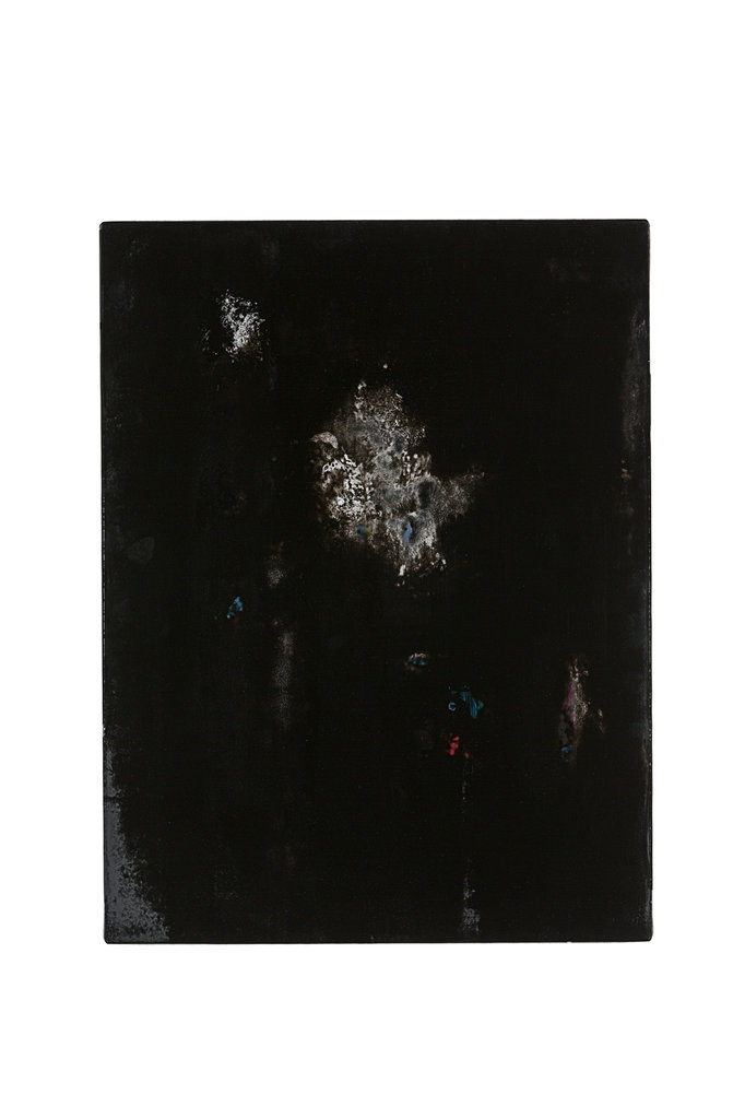 Katzensilber III (The Black Garden), 2010 • oil and polyester resin on canvas, 70 x 53 cm