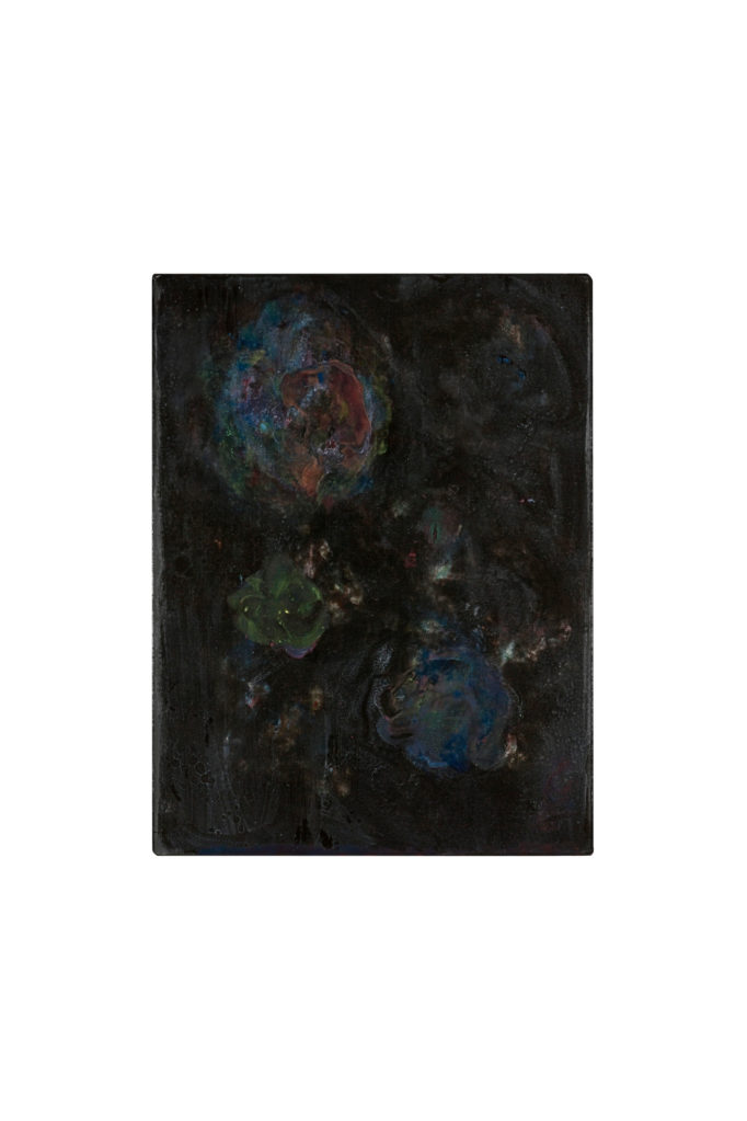 Untitled (The Black Garden), 2010 • oil and polyester resin on canvas, 70 x 53 cm