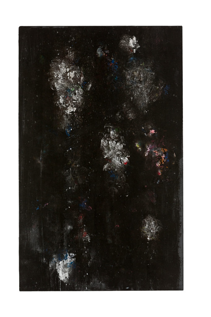 Katzensilber VI (The Black Garden), 2011 • oil and polyester resin on canvas, 113 x 70 cm