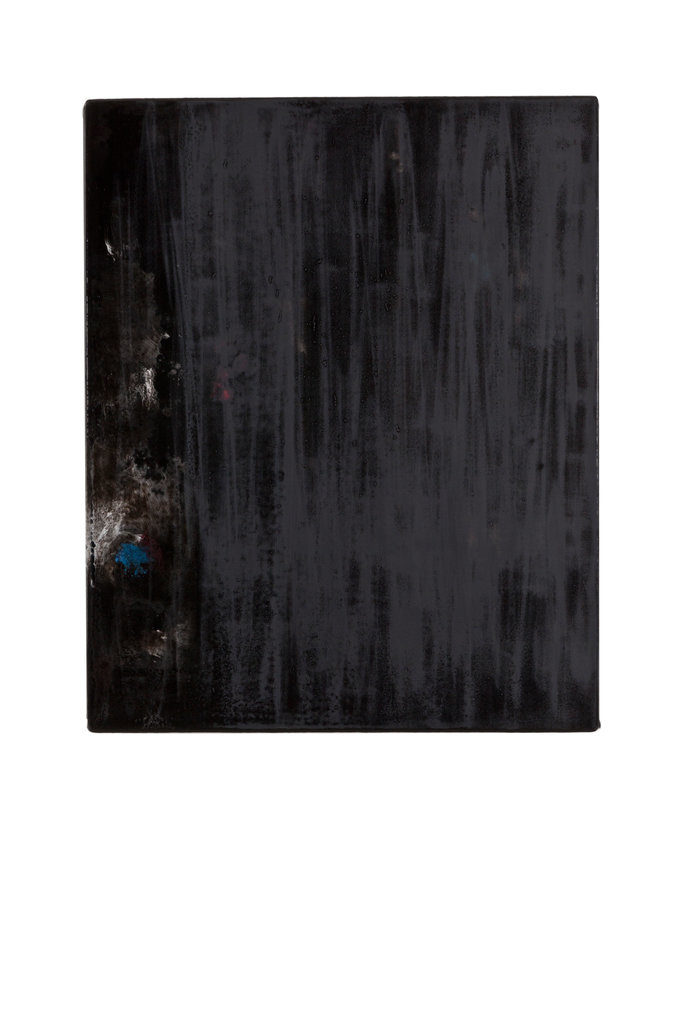 Katzensilber II  (The Black Garden), 2010 • oil and polyester resin on canvas, 53 x 43 cm