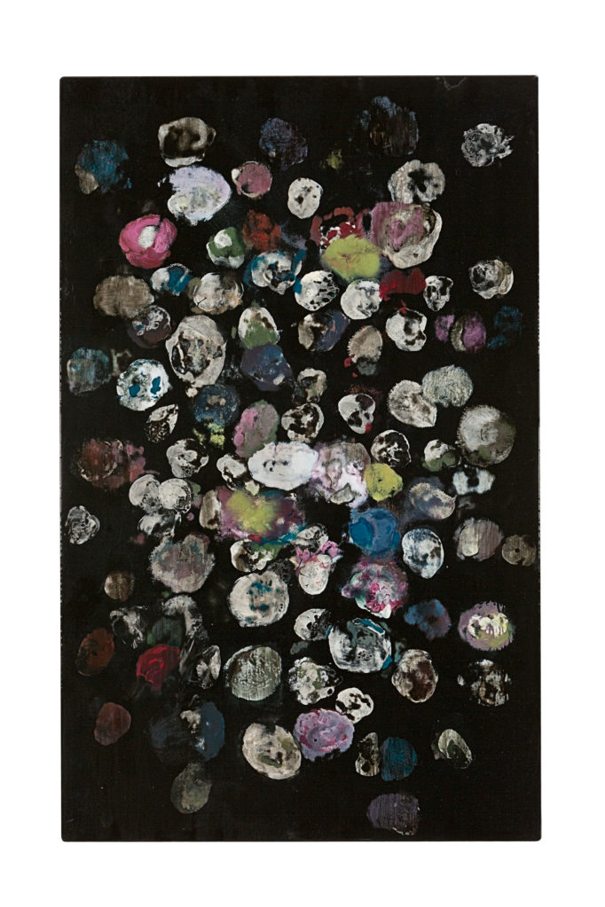 Untitled  (The Black Garden), 2010 • oil and polyester resin on canvas, 80 x 50 cm